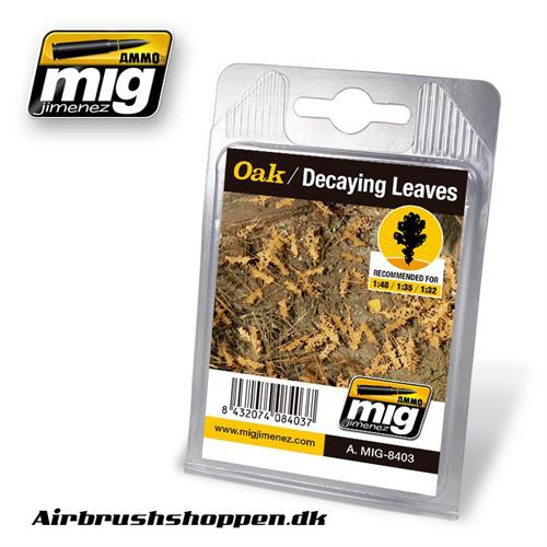 A.MIG-8403 OAK - DECAYING LEAVES