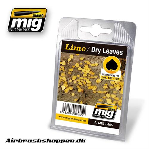 A.MIG-8405 LIME - DRY LEAVES